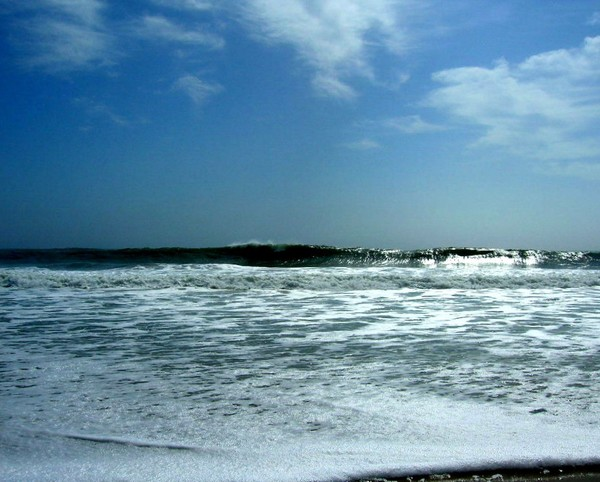 Surf OC #3