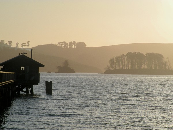 Tomales Bay Islands from Nick's cove