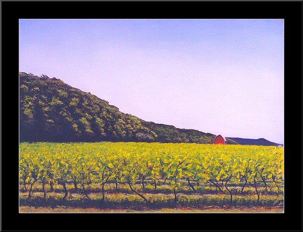 Vineyards Of E.D. Smith