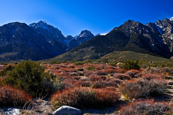 Mt. Williamson and Wild Canyon