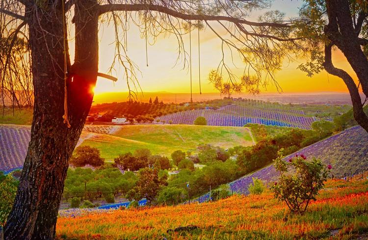 Sunset at Peachy Canyon
