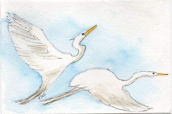 Flying Egrets Greeting Card