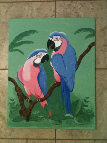 Macaws of a Different Color
