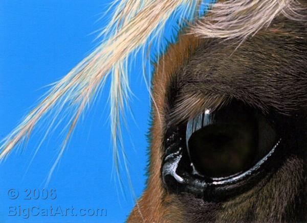Horse's Eye I