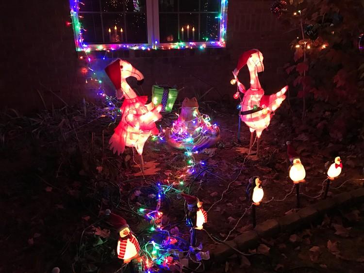 Christmas in Lexington, Kentucky