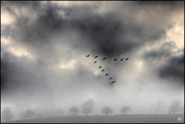 Flying into the Gathering Storm
