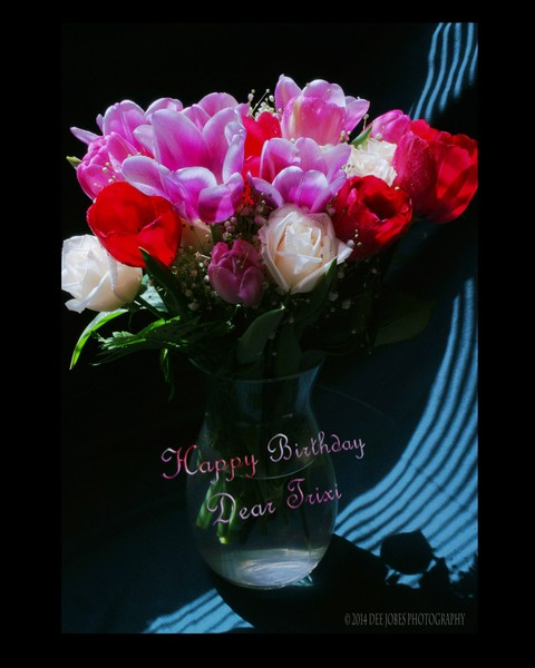 Happy Birthday  Trixi