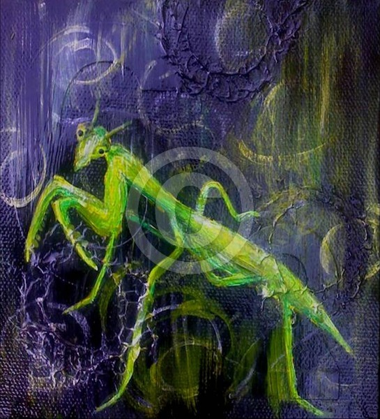 Preying Mantis Posing