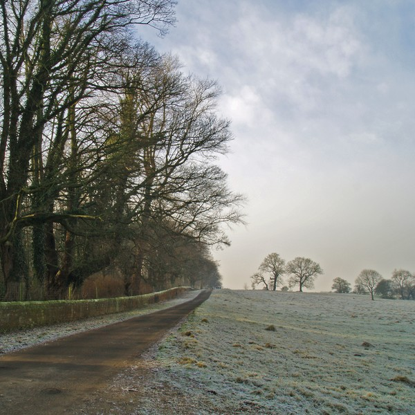 The Lane to Weardley