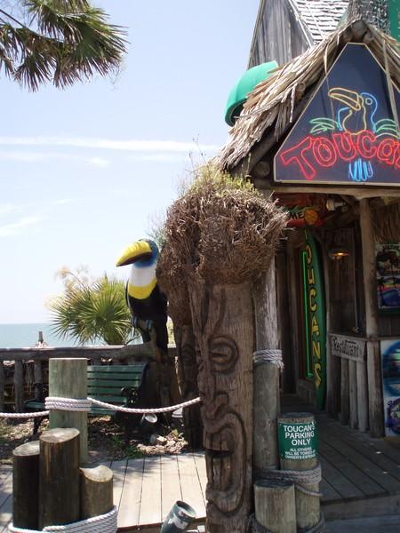 Toucans Mexico Beach, Florida