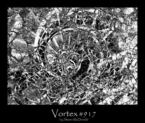 Vortex # 917