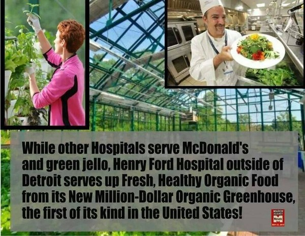AT LAST-HOPE FOR THE PLANET -ORGANIC HOSPITAL