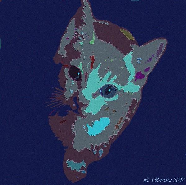 Wonderland Kitty
