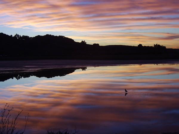 Sunset Reverie