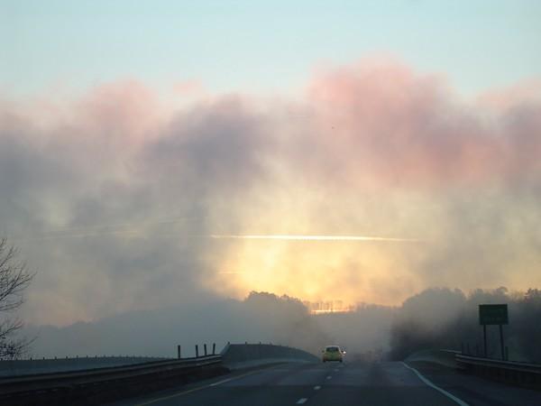 The Fog in Kentucky