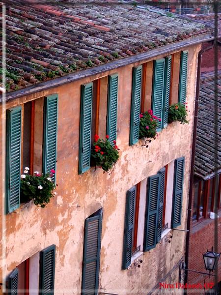 Siena - Dec 05