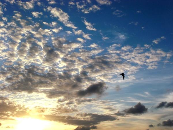 Dramatic Sky over Key West