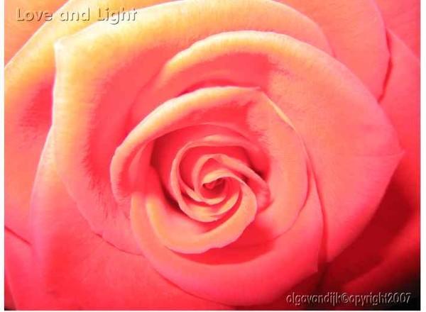 Love & Light©