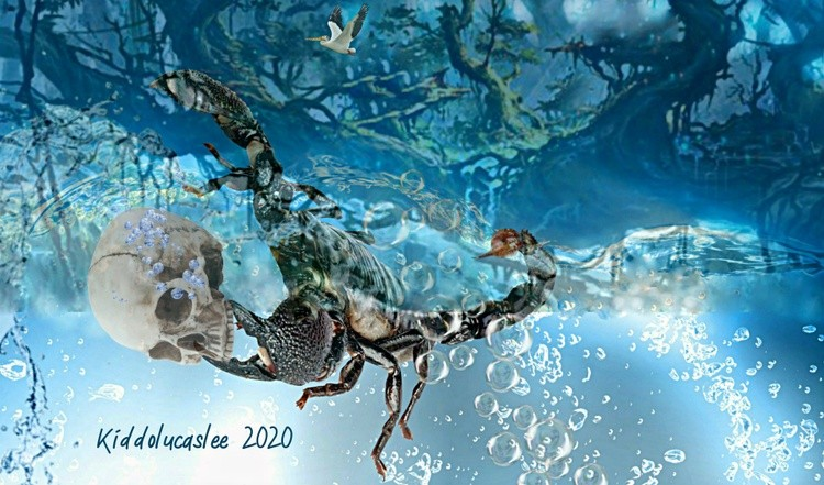 Small Skull Collector*  2020 Kiddolucaslee