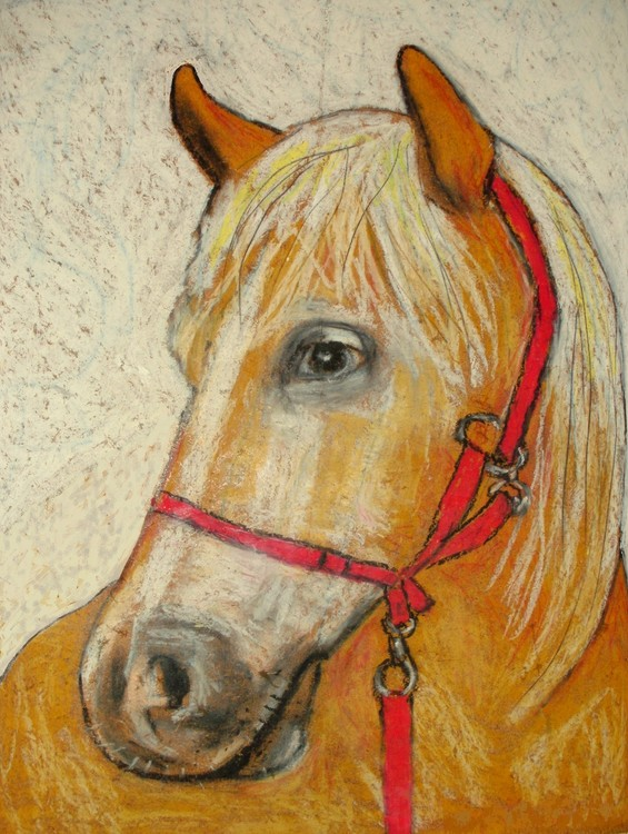 Baltieri's horse