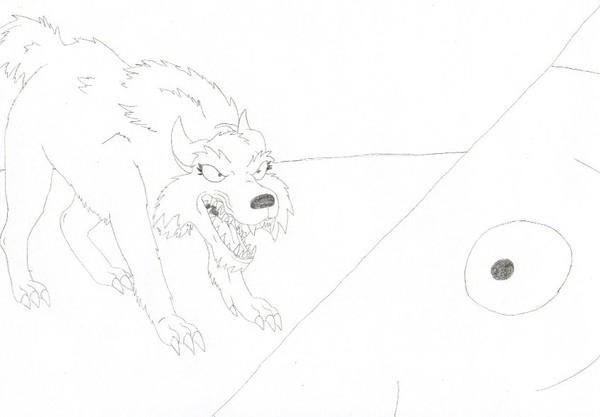 Wolf Transforms