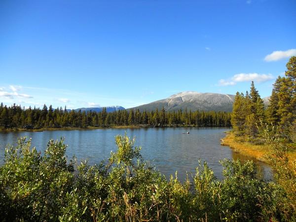 Alaska pics 3