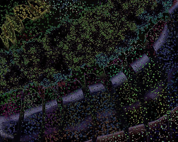 Trees alley fantasy
