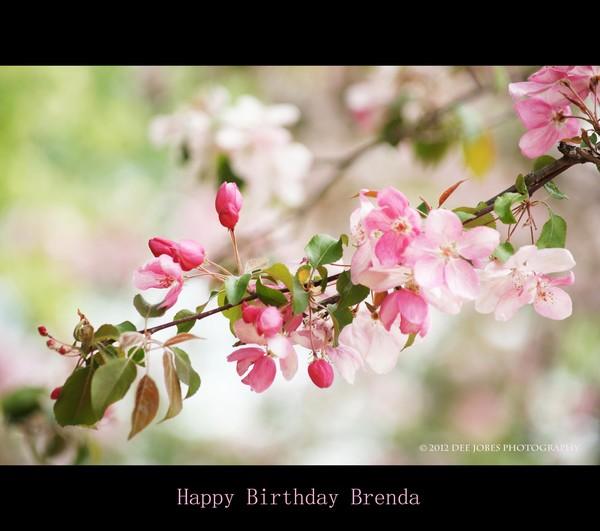 Happy Birthday Brenda