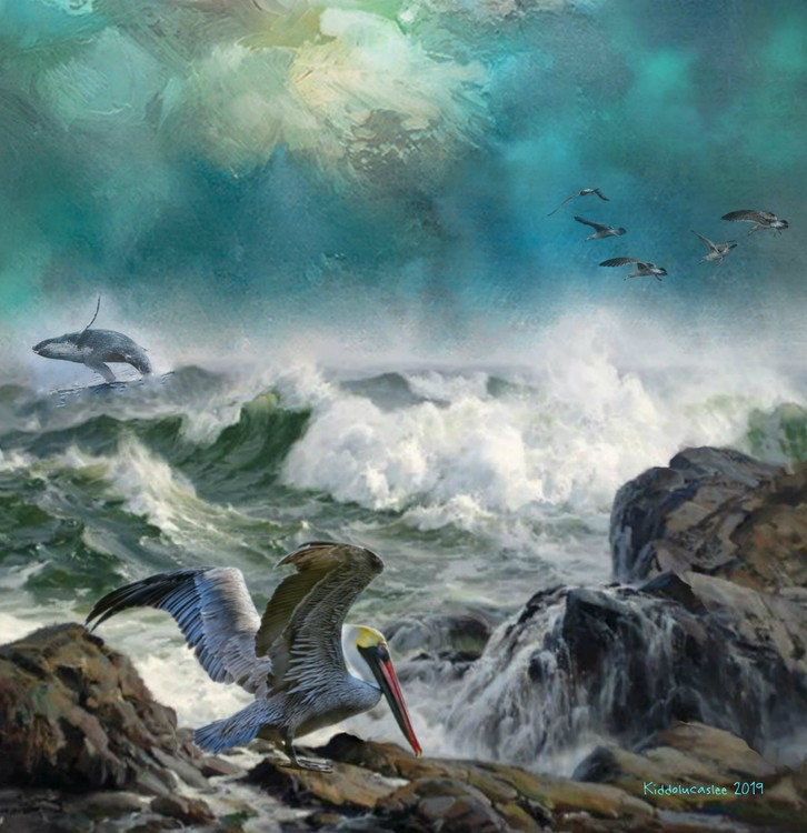 Ola Loca - Crazy Wave   *  2019 Kiddolucaslee