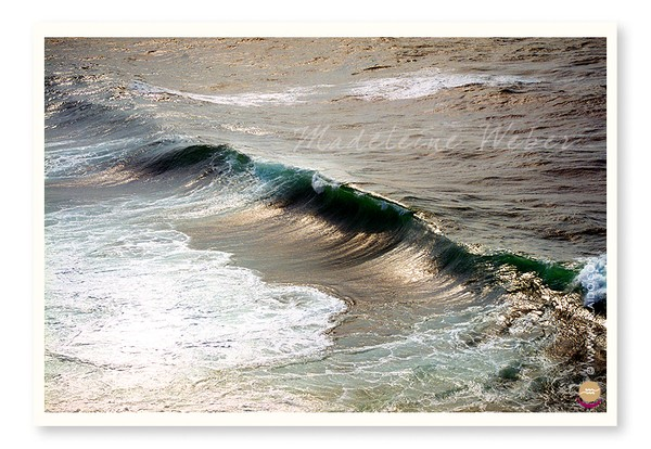 •Wave•