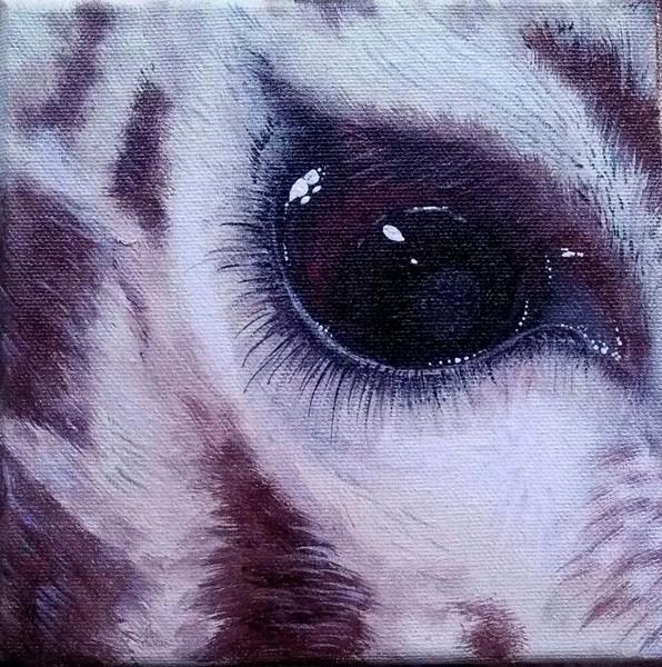 Eye Of The Giraffe 2