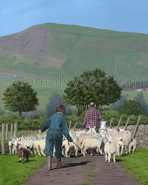 Riding House Farm, Peak District