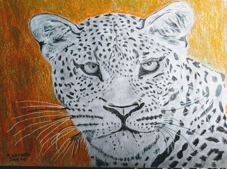 Can a Leopard change his spots?
