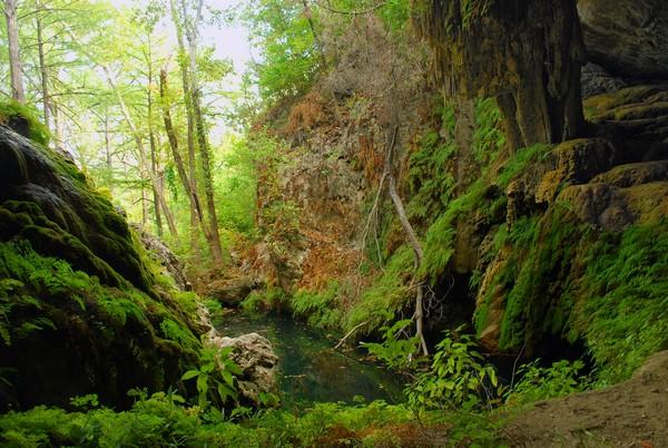 West Cave Preserve