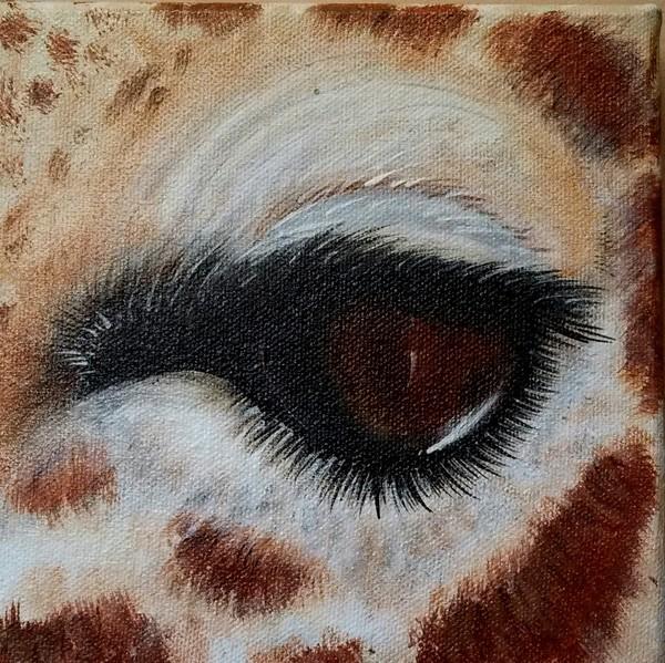 Eye Of The Giraffe 3