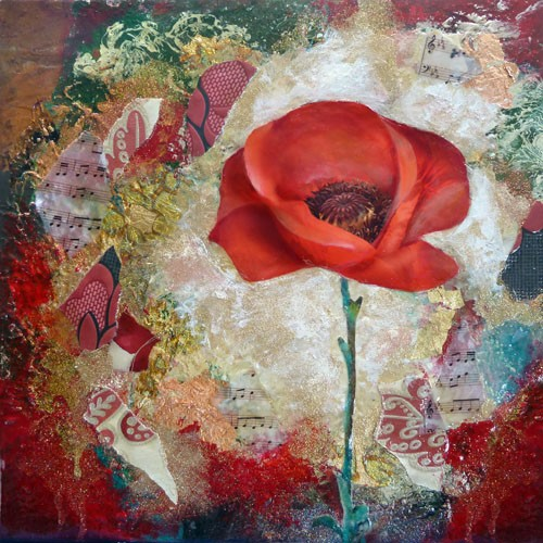 Flowers Enchanting Poppy