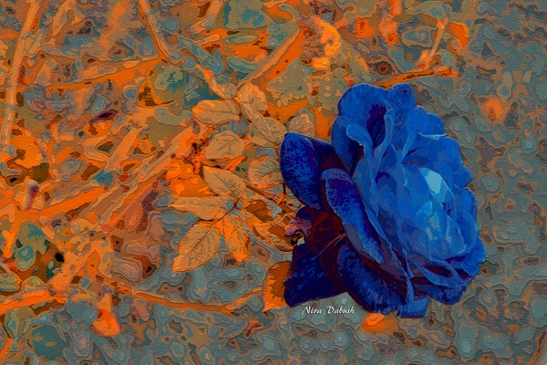 The Deep Secret of the Rose