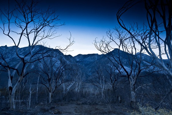 Black Canyon in Twilight