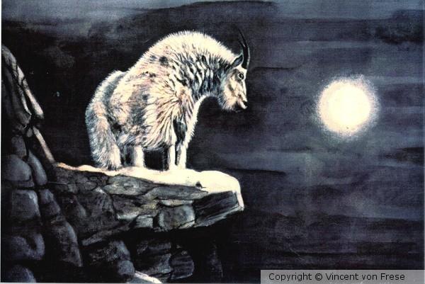 'Rocky Mountain Moon'