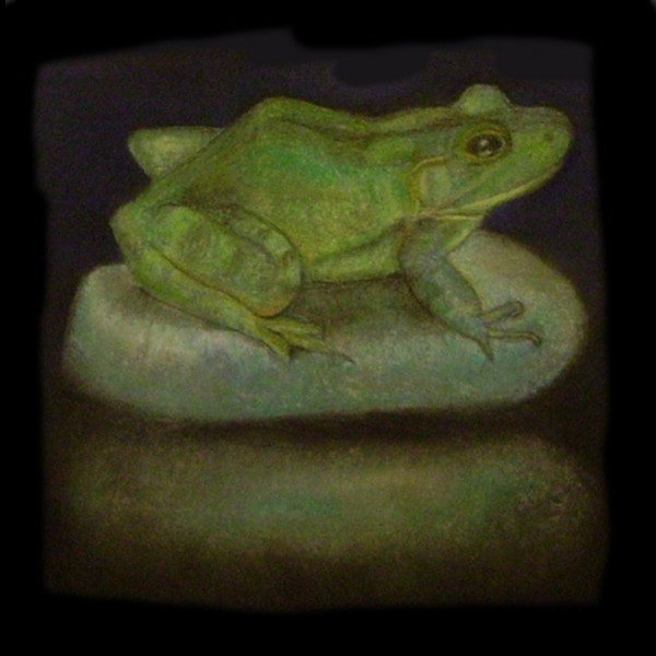 THE FROG ISOLATED