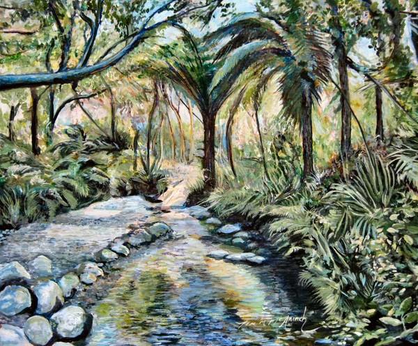 Wellington Botanical Garden.