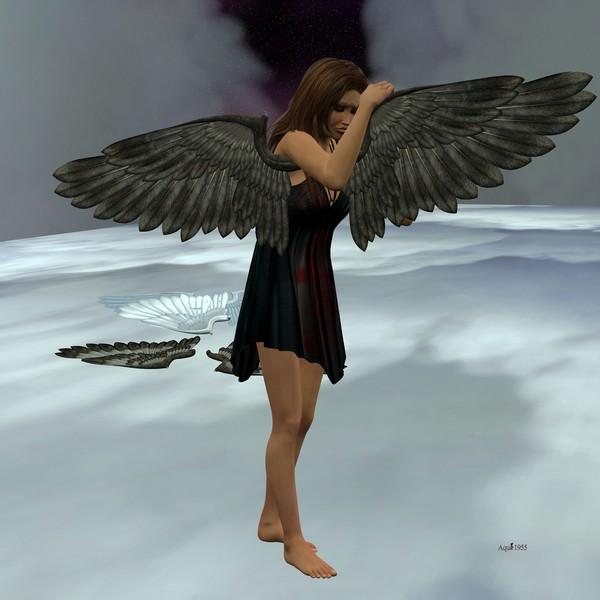 Wings in Life
