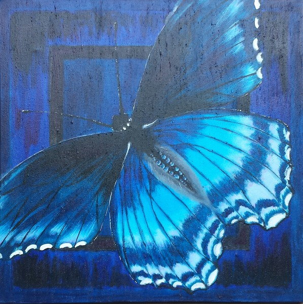 Blue Azul Butterfly