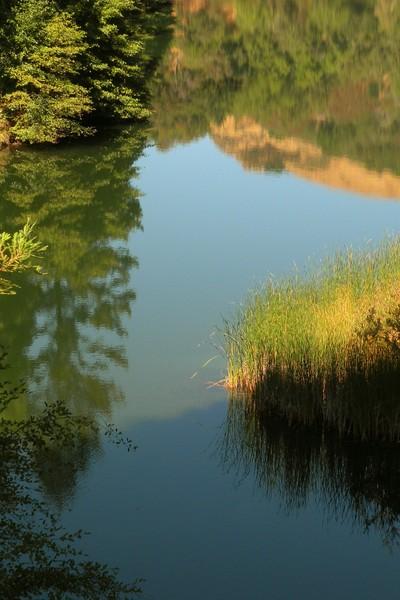 Phoenix lake reflections