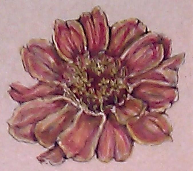 Zinnia Watercolor