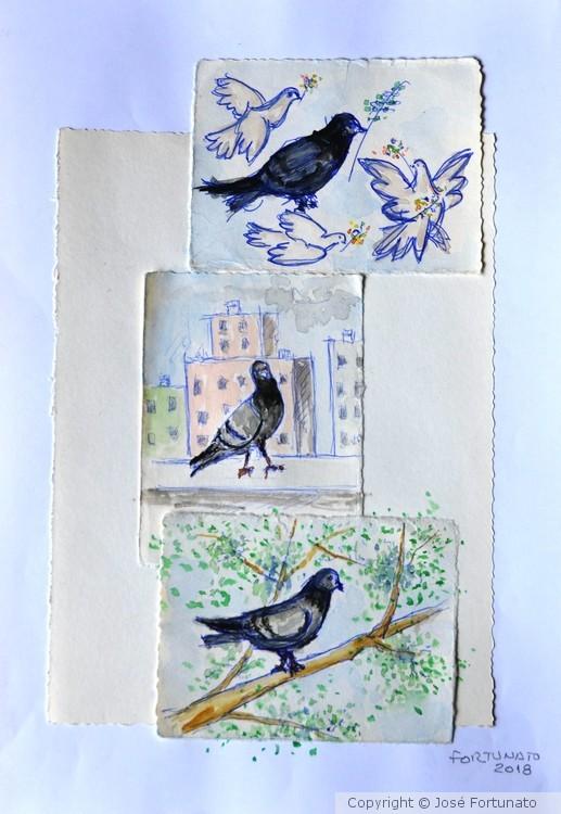 Pigeonzinhos de la Katryna
