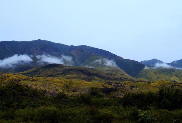 Maui Spirits