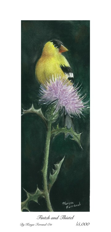 Finch and Thistle