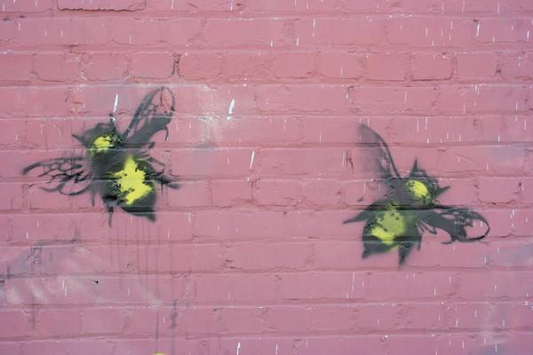 LA WALL ART #2