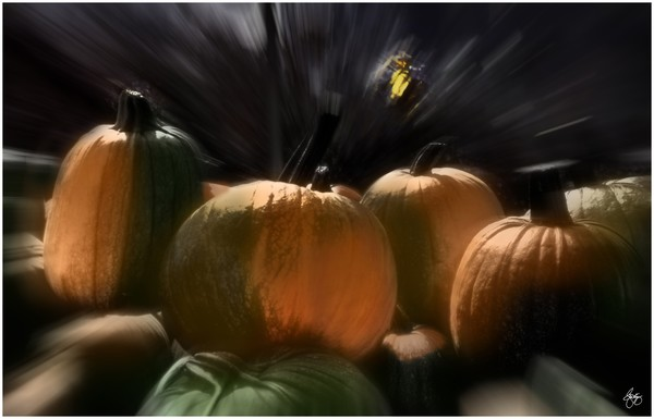 A Rush of Painted Pumpkins